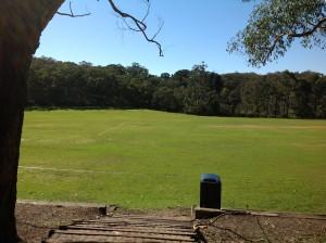 緑の木々に囲まれた広大なグラウンド。