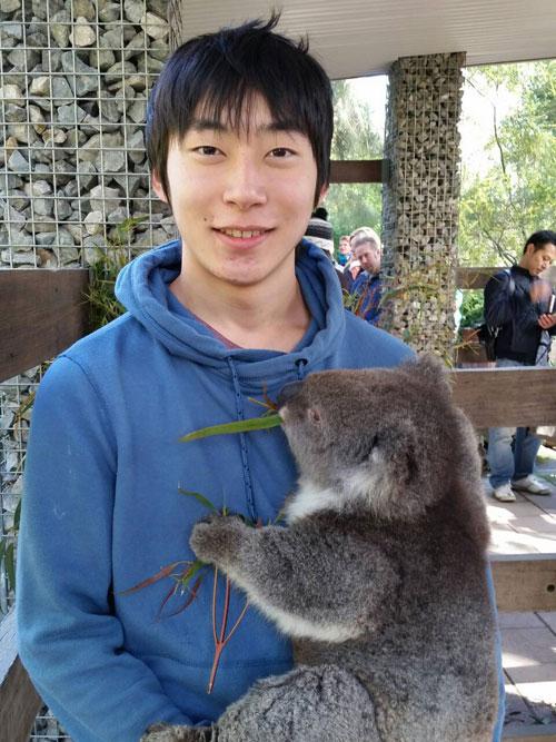 Cuddle-Koala-Fuga1